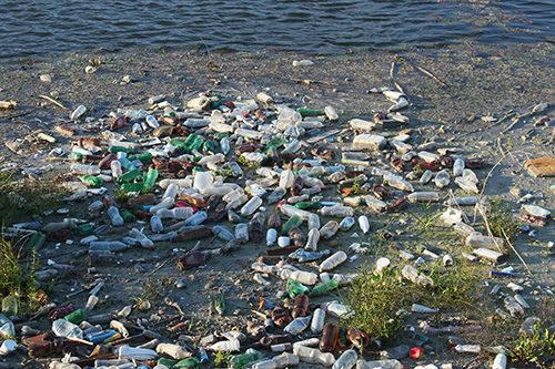 http://showerpot.org/wp-content/uploads/2017/01/landfill-water-bottles-500x333.jpg